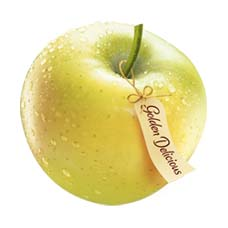 Imported Golden Apples(1)KG